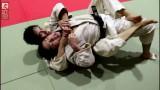 The origin of BJJ: Kosen Judo